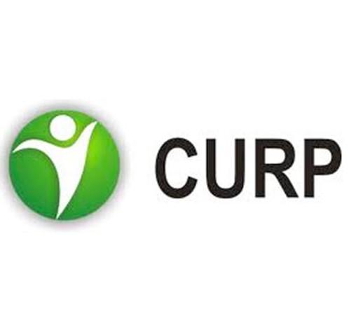 Imprimir CURP original